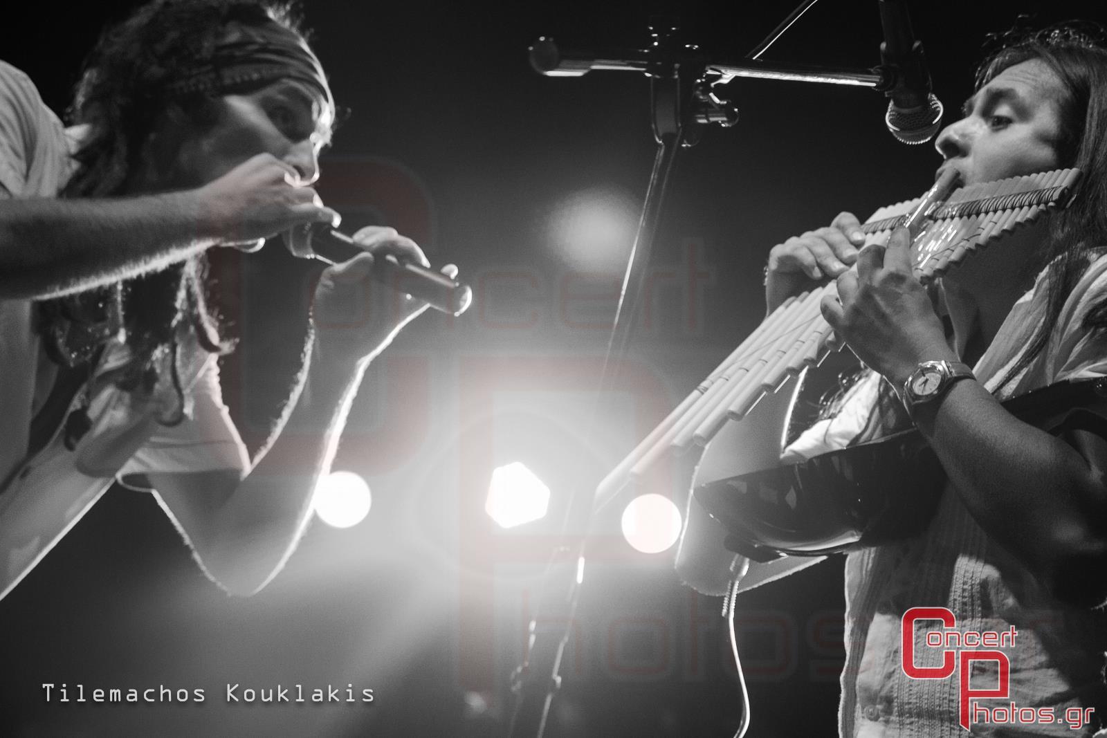 Locomondo- photographer:  - concertphotos_-6060